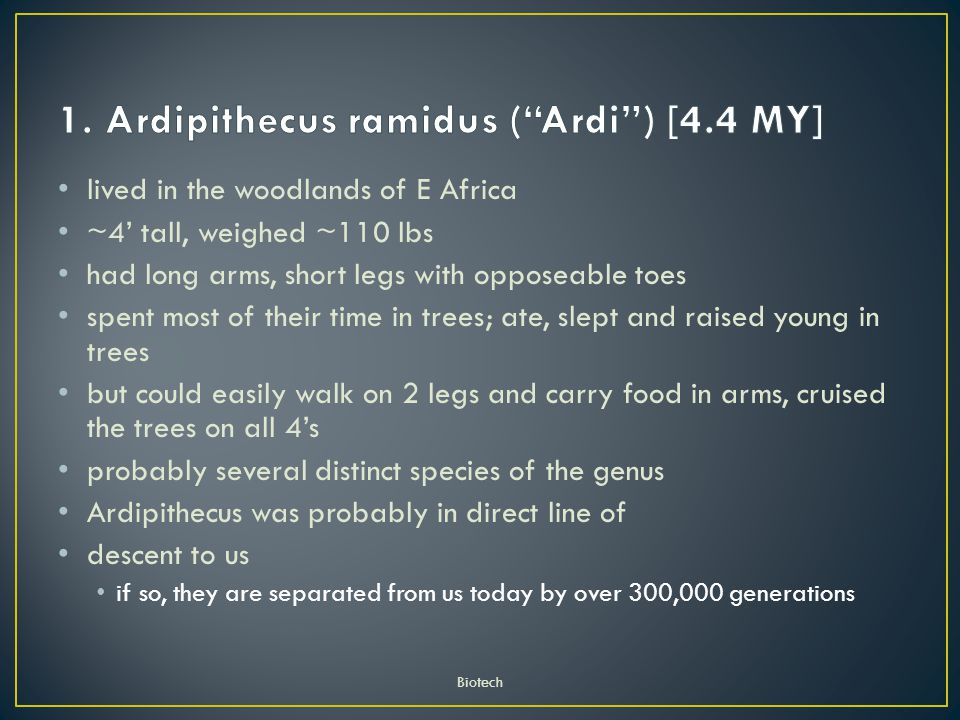1. Ardipithecus ramidus ( Ardi ) [4.4 MY]